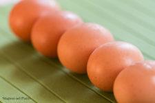 uova-stagioni-nel-piatto-etichettatura-classificazione