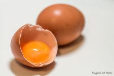 uova-proprieta-nutritive-stagioni-nel-piatto