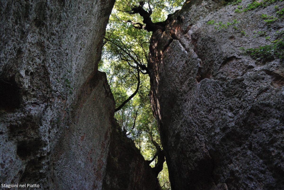 Vie cave di Sovana
