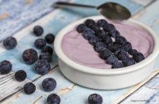 Mousse eloce di mirtilli stagioni nel piatto